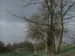 День Триффидов / Day Of The Triffids (1981) - 4 серия