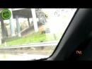 Подборка приколов и неудач за Декабрь 2012