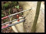 охота с луком: соревнования лучников