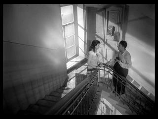 х/ф «Летят журавли», 1957 (реж. Михаил Калатозов, оператор Сергей Урусевский) / Лестница