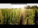 «С моей стены» под музыку Rasta Orchestra - Мёртвый Город (Dubstep Ganjet Mix). Picrolla