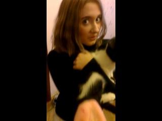 Оправдание перед котом