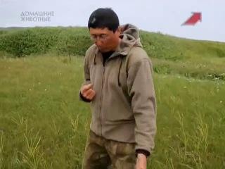 Командоры - страна ветров ч.2