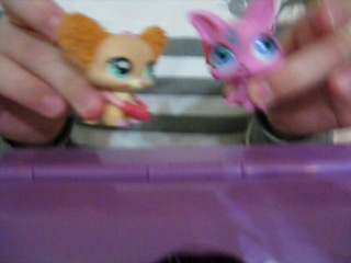 PLAY LPS