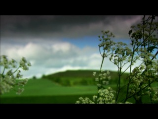 3 of 5 - bbc: история шотландии: королей возвышают епископы /a history of scotland: bishop makes king/ 2008