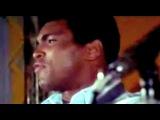 Muhammad Ali - The Greatest Tribute