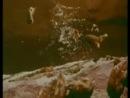 Лемминги самоубийцы - миф или реальность ?!