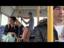 Czech Bus