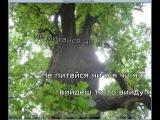 Надежда Кадышева - Два дубки