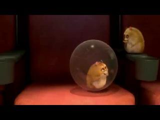 Рино, хомяк из мультфильма «Вольт» в ожидании «Классного Мюзикла -3»