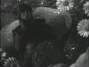 Волшебное зерно (1941 г.)