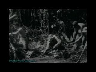 «Военные машины Второй Мировой войны. США (02). Солдаты джунглей» (Документальный, 2007)