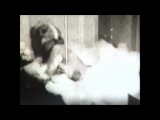 «Marilyn Monroe» Celebrity Sex Tapes (16:9) HD