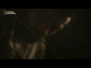 Побег / Breakout  Заговор в Коннектикуте (2 сезон: 2 серия из 8)