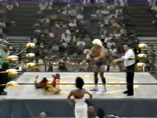 [WM] Bash at the Beach 1994- Ric Flair vs Hulk Hogan - 17/7/94