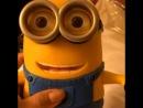 🔊🔊🔊amei 💛💛💛Nossa que amor 💛💛💛💛 acabei de ganhar da @vivisstore esse minion que interage, fala se mexe e ainda vc pode usar iPhone, iPad ou android estou amando💛💛💛💛💛 quem quiser pede para ela uma loja super confiável de importados @vivisstore @vivisstore @vivisstore