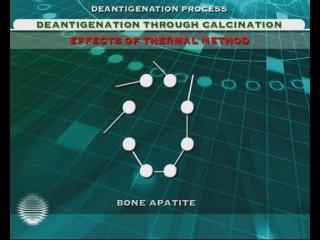 Процесс деантигенизации Bioteck