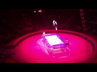 Цирк никулина в ижевске 2012г.