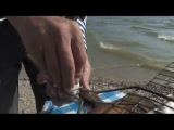 Рыбалка на Азовском море 2 http://trey.ueuo.com