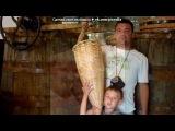 абхазия 2011 под музыку Serdar Ortac - Seytan- песня про Наташу турецкая 2011)). Picrolla