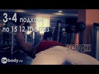 Набор мышечной массы программа тренировок Часть 1 yf,jh vsitxyjq vfccs ghjuhfvvf nhtybhjdjr xfcnm 1