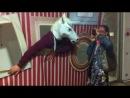 Рвотный конь