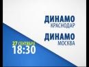 Чемпионат России по волейболу — «Динамовское» дерби!