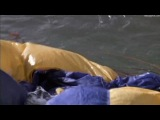 Акулы 3 Мегалодон Shark Attack 3 Megalodon (2002)