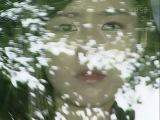 perfume de verano 12