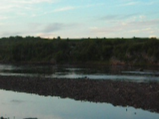 МТЛБ через реку Сосновку