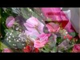 «С ДНЕМ РОЖДЕНИЯ!!!» под музыку Николай Басков - Твой день рождения. Picrolla