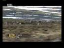 Укротитель по вызову Адский кабан Остров орангутанов