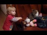 Кот котик испуг удивление ребенок малыш смешно весело прикол )