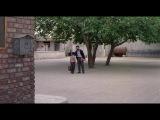 Иранский фильм: Дети небес /реж. Маджид Маджиди/