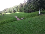 Сходка в парке на пионерской вроде