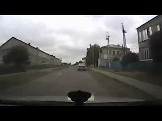 Водитель 2 км тащил собаку по дороге, пытаясь убить