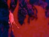 Epica - Run For A Fall (The Last Unicorn Edit)