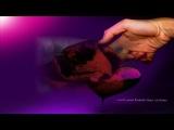 Най - божественната сръбска балада - Lane moje