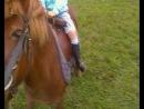 Моя дочь на пони-Растике