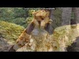 «россия» под музыку Павел Воля и Гарик Мартиросян - Наша Россия - Страшная Сила (Музыка из сериала