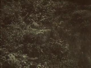Одинокий голос человека (отрывок про смерть)
