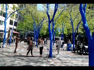 11 Seattle, Сиэтл,парк синих деревьев и брон и серб статуй