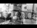 «Забытая война ( Афганистан)» под музыку Сектор газа - Демобилизация. Picrolla