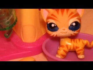 LPS Коты воители 21 век (серия 8)