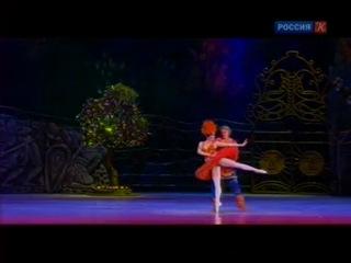 звезды мирового балета. петрушка, жар-птица, болеро