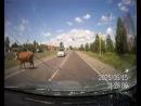 Любовь на дороге привела к аварии