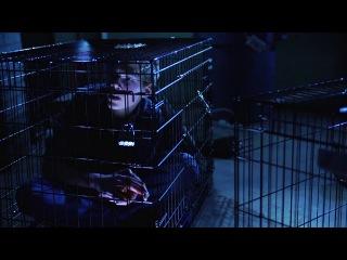 Юморист-Хорошист (The Good Humour Man, 2013) русские субтитры