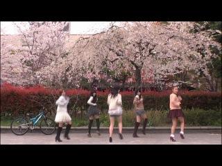 C-ute - Sakura Chirari (2012 Shinsei Naru ver.)