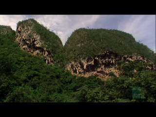 BBC: Дикие Карибы  на англ. языке / Wild Caribbean