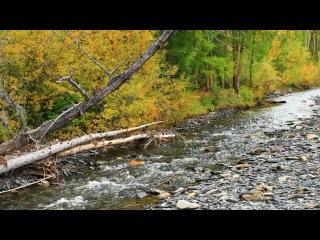 Хинике-река рябчиковая